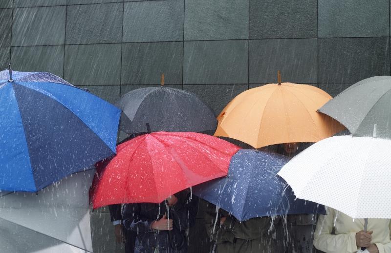 Дождливая погода сохранится вНижегородском регионе доконца недели