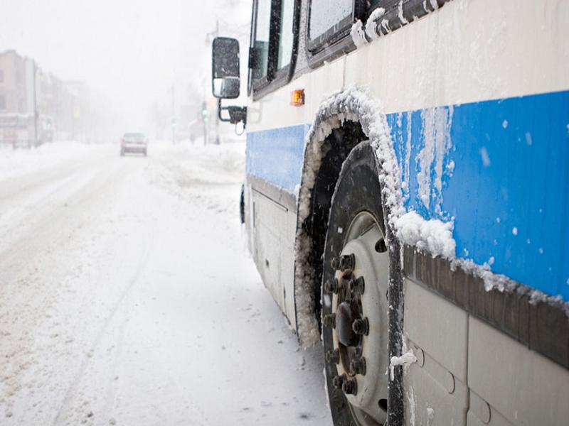 Водителя липецкого автобуса, высадившего вмороз ребенка, ожидает проверка