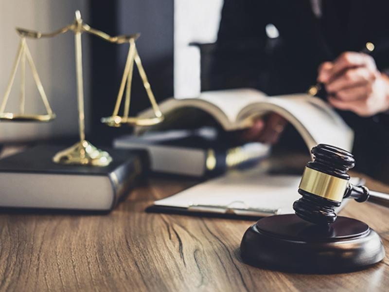 стоимость суд юрист